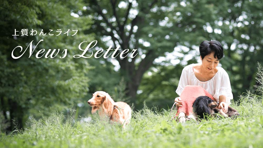 上質わんこライフNews Letter